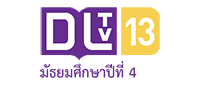 logo channel 13